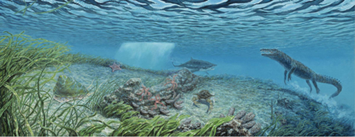 Eocene - Nearshore Habitat Saltwater crocodiles and sand tiger sharks shared this environment with extinct gastropods like Gistoria.