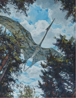 Quetzalcoatlus - Cretaceous. Perhaps the largest flying creature of all time, Quetzalcoatlus had a wing span of 11-12m.